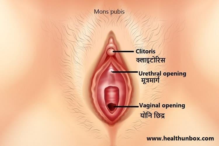 लिंग को किस छेद मे डालना चाहिए - Which hole should I use during sex in Hindi